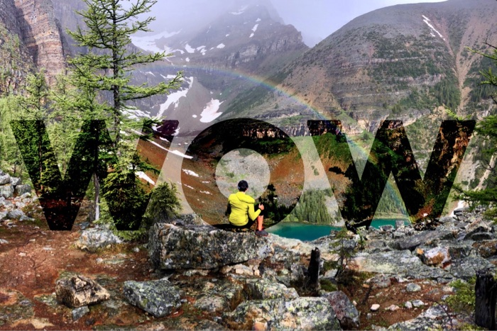 Digital Marketing Services - 10 Peaks Consulting Banff National Park Marketing